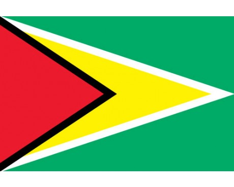 The EMBA Guyana becomes ALJGSB's first regional programme